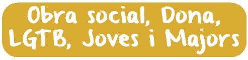 BotoSocial